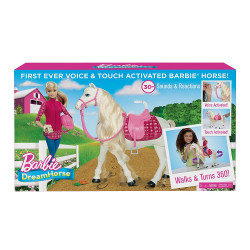 Кукла Барби и интерактивная лошадка мечты (Закрытая упаковка) Barbie Dream Horse and Doll, Branded Packaging