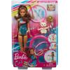 Кукла Барби Тереза художественная гимнастка Barbie Dreamhouse Adventures Teresa Spin 'n Twirl Gymnast Doll